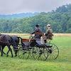 Familia Amish en Carruaje