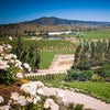 Valle De Casablanca Adobestock 128038063