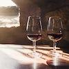 Prueba de vinos en Bodega de Vino de Oporto